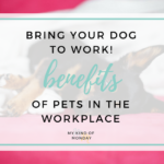 Here, Doggy! Benefits of Pets in the Workplace
