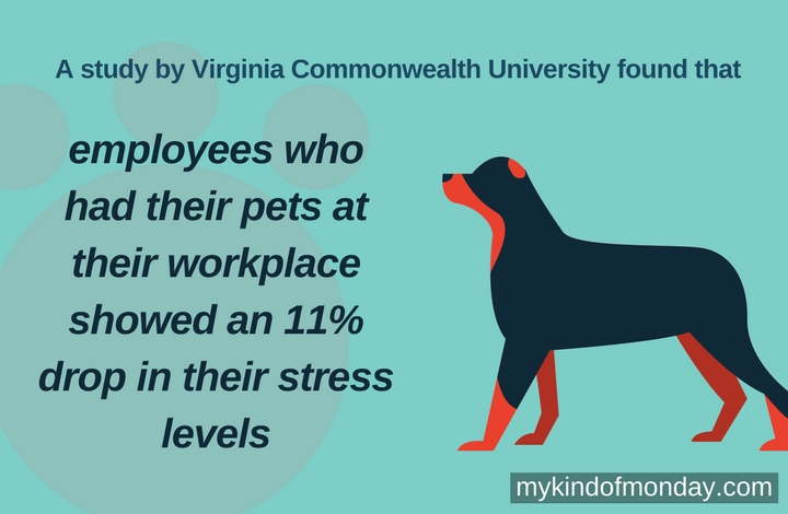 employees who had their pets at their workplace showed an 11% drop in their stress levels